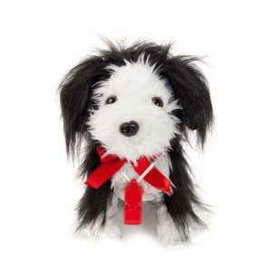 Noriel Pets - Toto Fluierici Bearded Collie